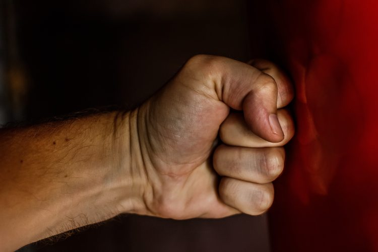 aggressive-angry-boxer-163431